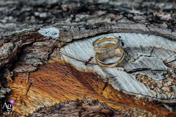 ocenená fotografia svadobný detail wpja purple award fotograf Martin Almáši